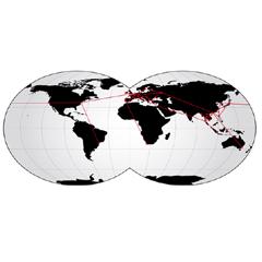RiLink Global Fiber Service