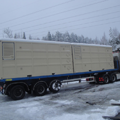 Ammunition Freight and Storage Container